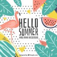 SummerMascot