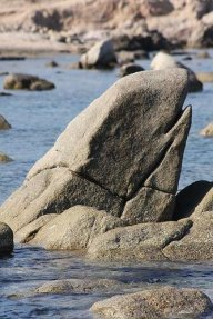 Granitefish