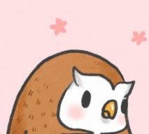 Owl Escapee